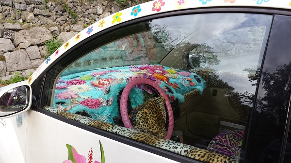 Flower power: On the way we spot a very creatively decorated Volkswagen Beetle